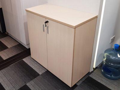 LandDesk - Custom-made Cabinet